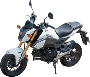 Fahrzeuge Fahrschule Hirzel - Honda MSX A1